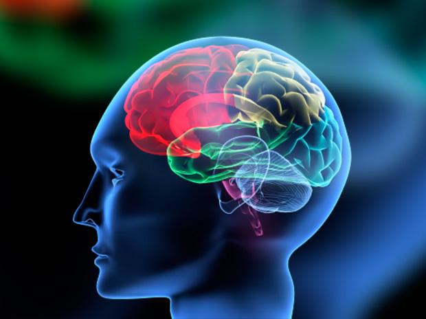 Capacitação em Avaliação Neuropsicologica - basico