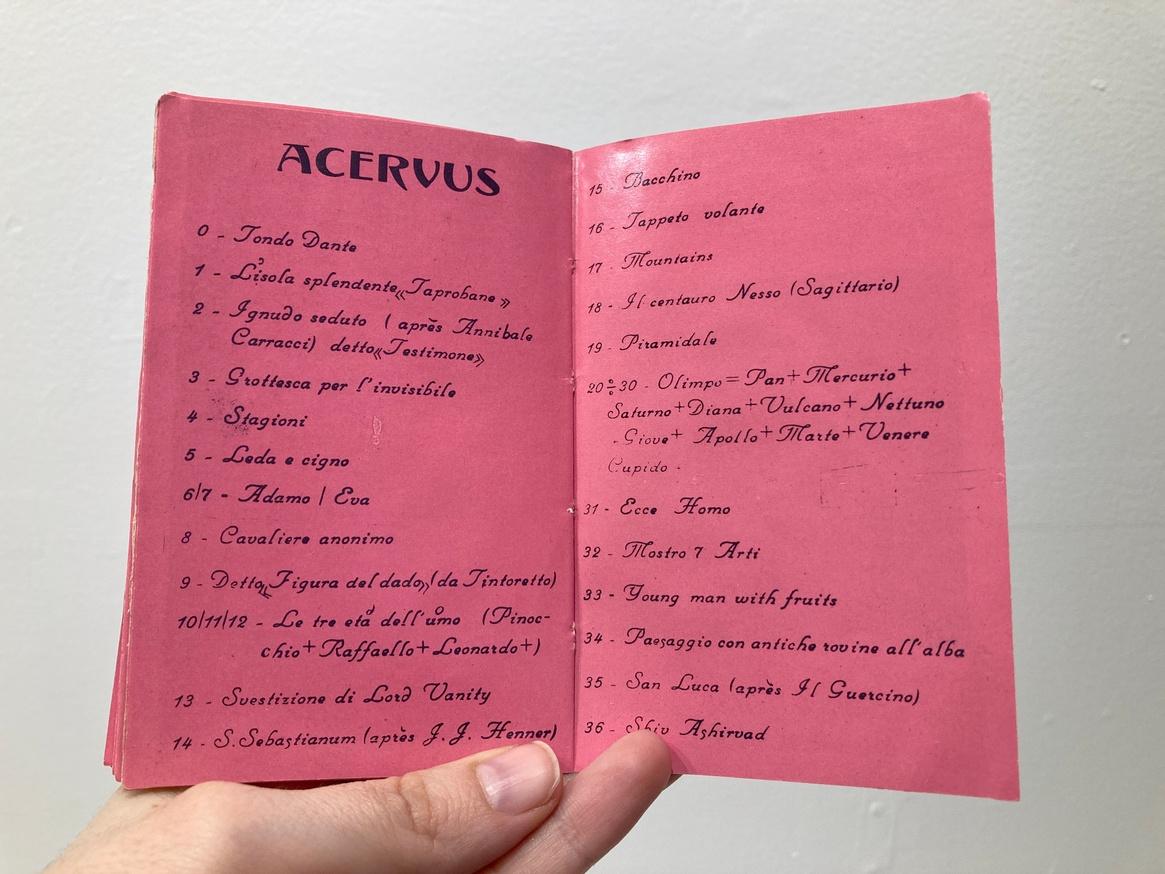 Acervus [untitled] thumbnail 6