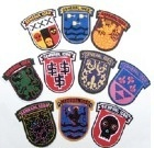 Set of 10 Chenille Crests
