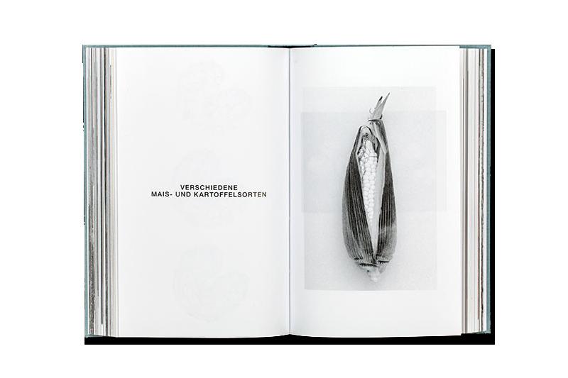 Kleine Fotoenzyklopädie thumbnail 5