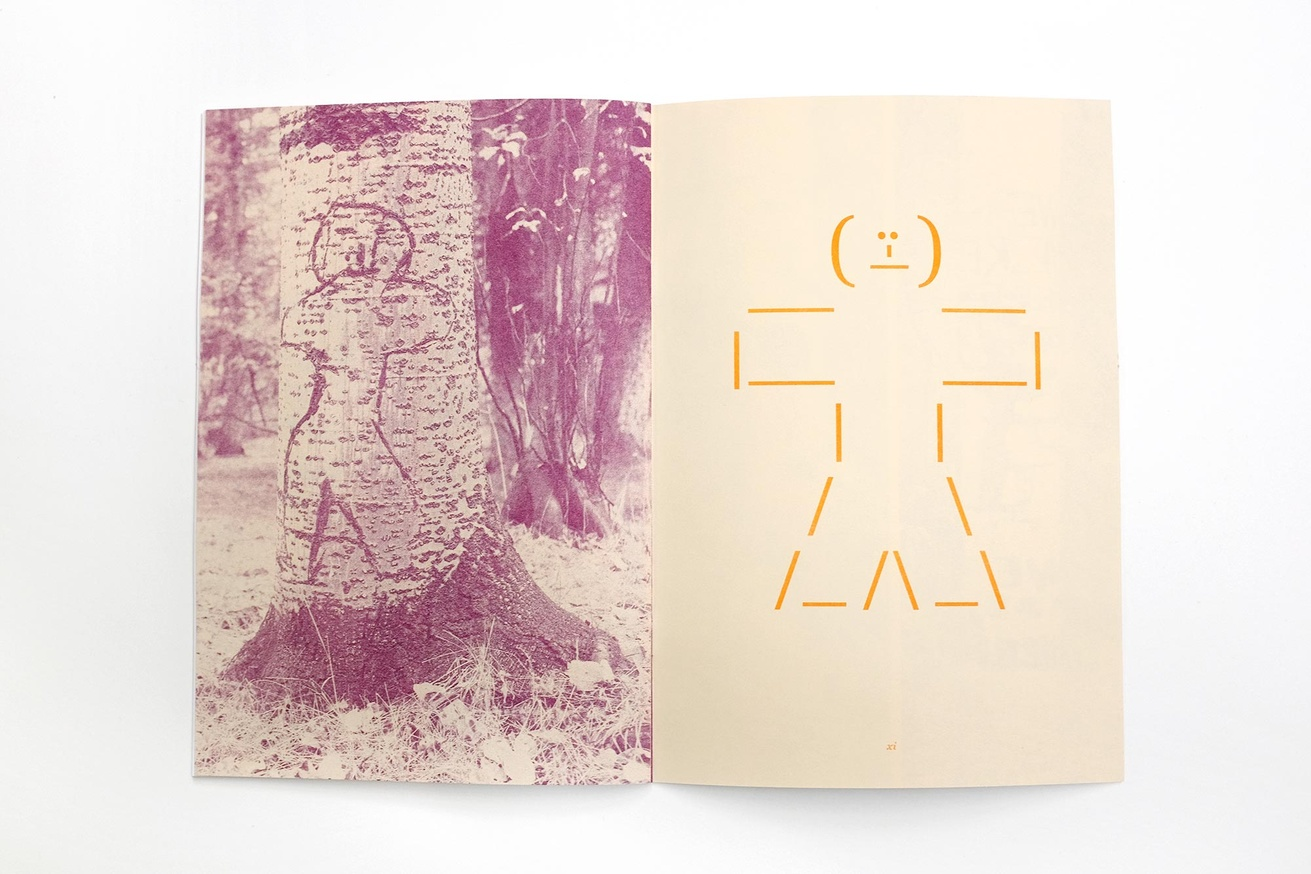 Written Names Fanzine #7: Names Carved into Aspen Trees by Sheepherders Sawtooth National Forest, Idaho thumbnail 5