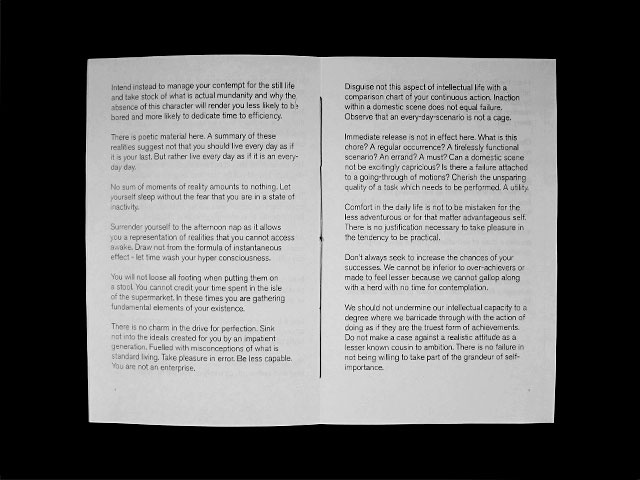 Domestic Manifesto thumbnail 3