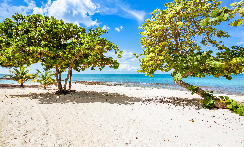 Beach Living  at Grandview (BLS)