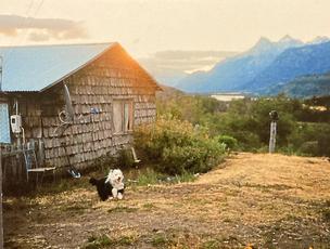 Patagonia, Chile Postcard