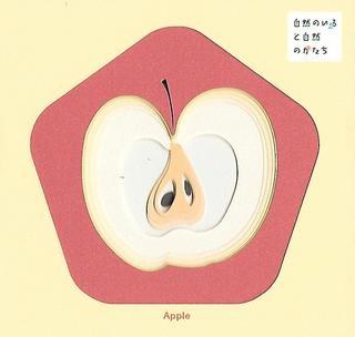 Natural Colors, Organic Shapes A (Apple, Pumpkin, Tomato)
