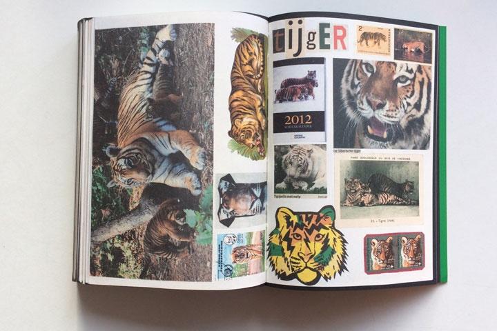 Animal Books For Jaap Zeno Anna Julian Luca thumbnail 5