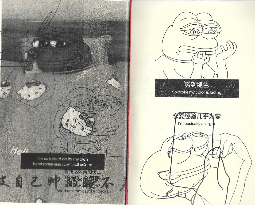 Pepe the Sad Frog Coloring Book and Chinese Learning Guide thumbnail 2