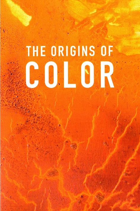 The Origins of Color with Raw Meat Collective