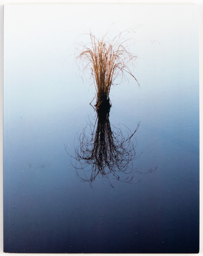how lonely, to be a marsh