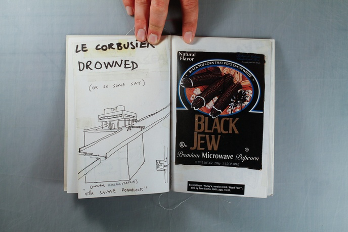 Le Corbusier Installation thumbnail 3