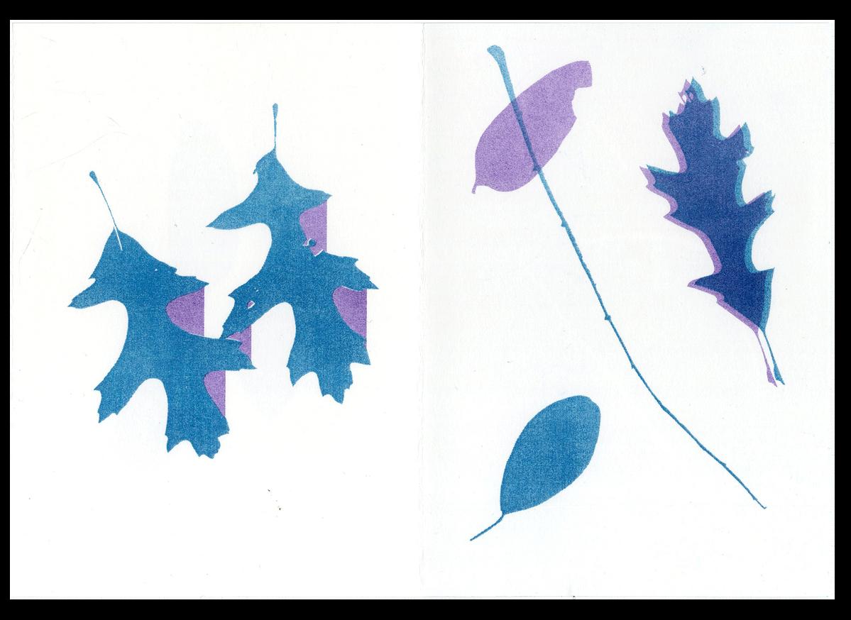 Fall thumbnail 4