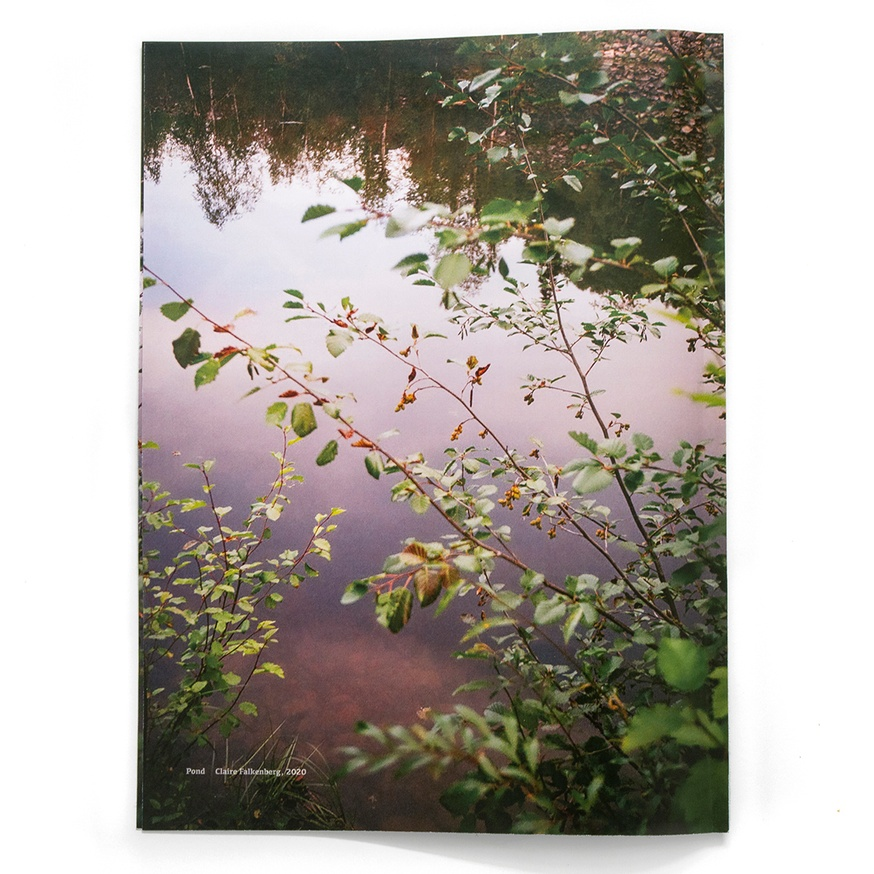 Pond thumbnail 4