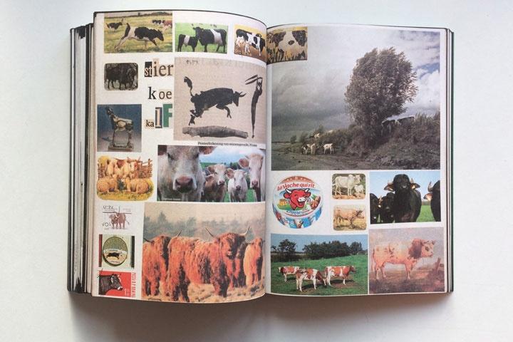 Animal Books For Jaap Zeno Anna Julian Luca thumbnail 3