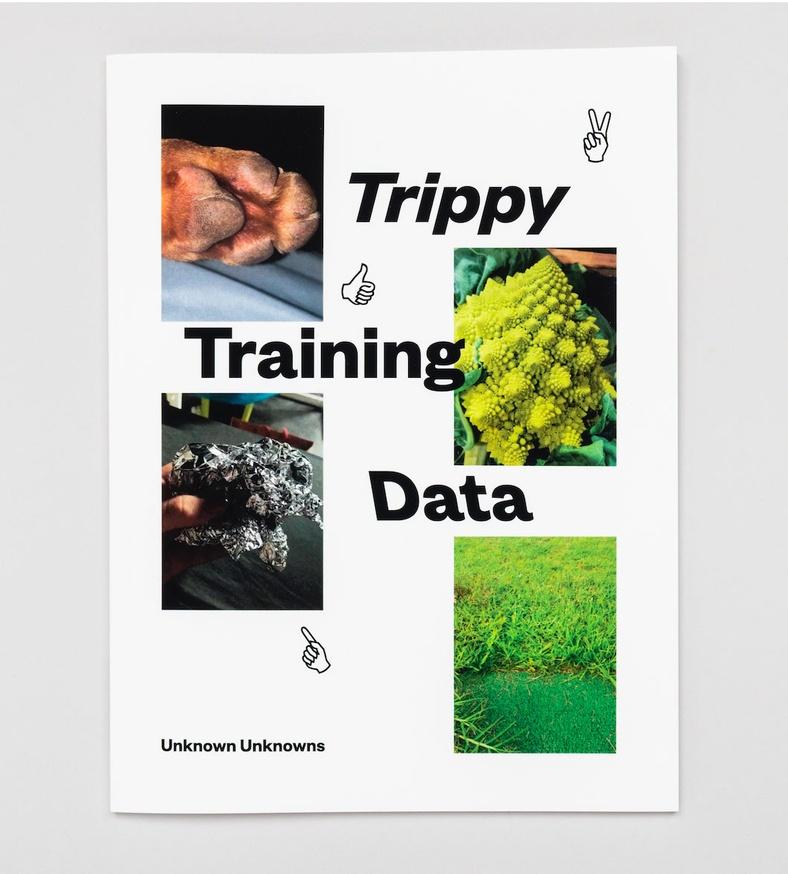 Trippy Training Data