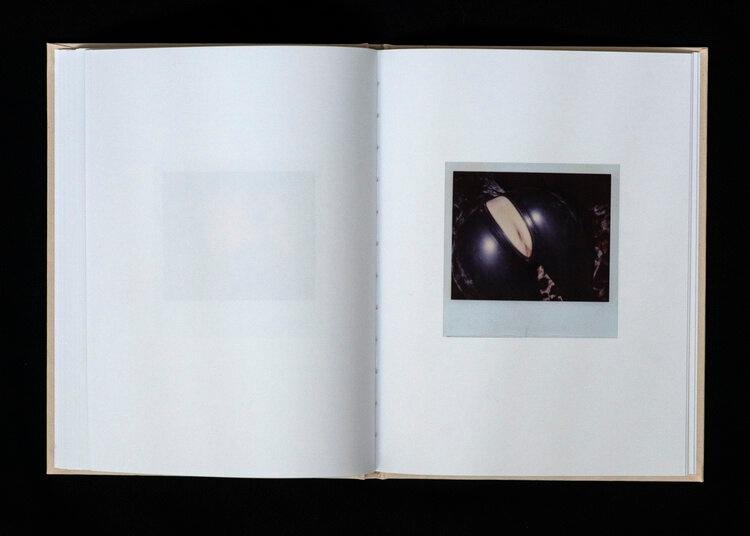 Closer as Love: Polaroids 1993 - 2007 thumbnail 5