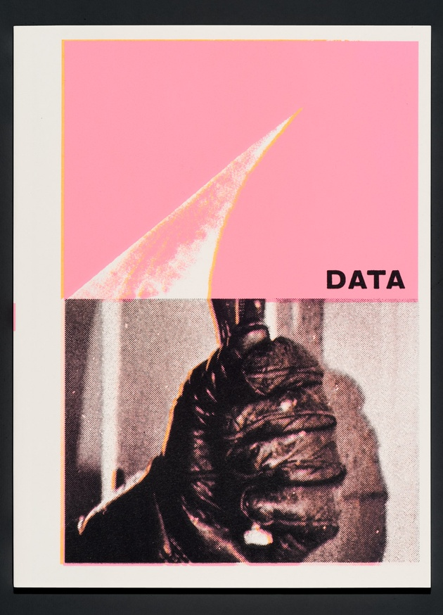 DATA thumbnail 3