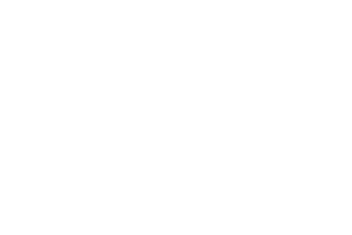 Ever After 2021 Camping and Ticket Packages logo