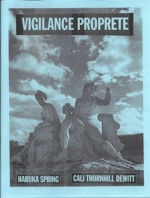 Vigilance Proprete
