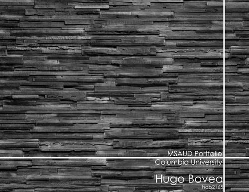 UD-BoveaGarciaHugo-SP20-Portfolio-1.jpg