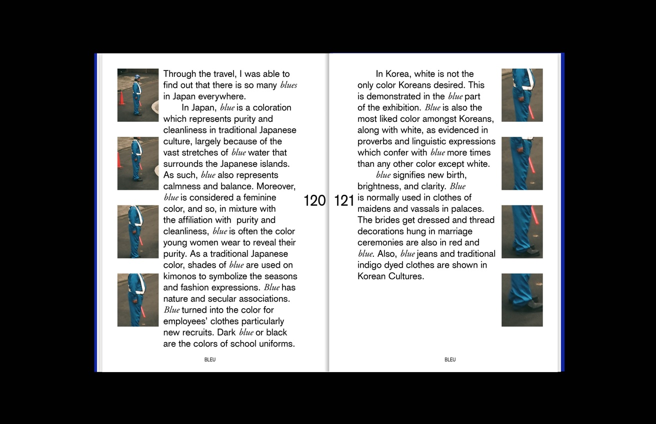 BLEU thumbnail 8