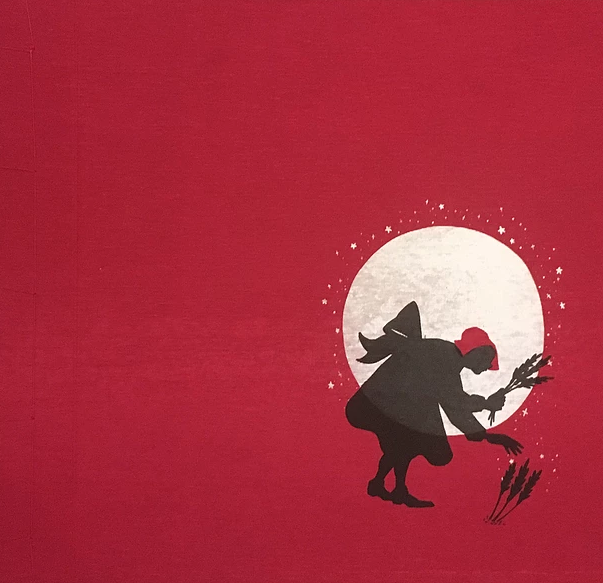 Little Red Witch [Hardback]