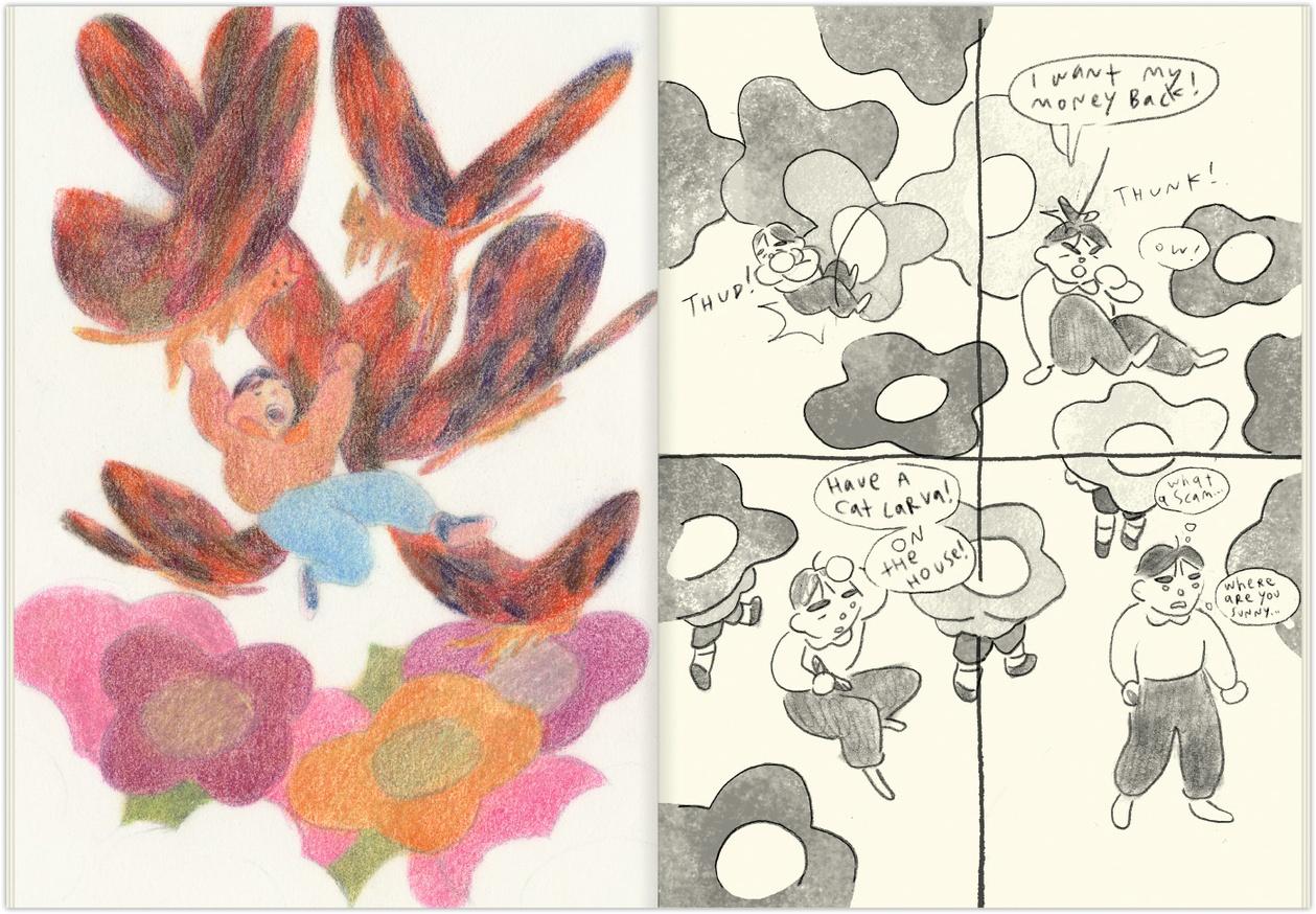 WYD thumbnail 3