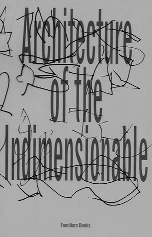 Architecture of the Indimensionable
