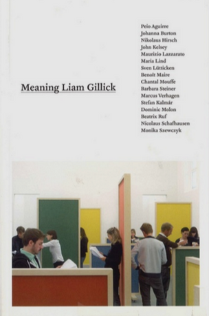 Meaning Liam Gillick