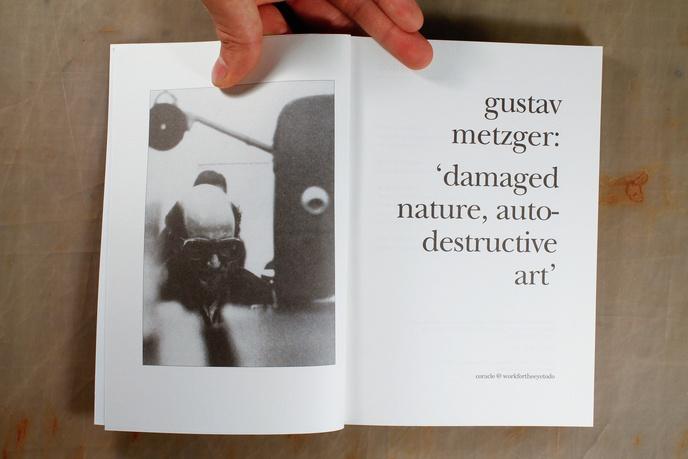 Damaged Nature, Auto Destructive Art thumbnail 4