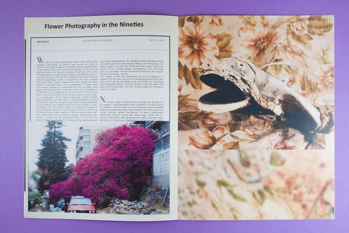 Flower Photography in the Nineties thumbnail 3