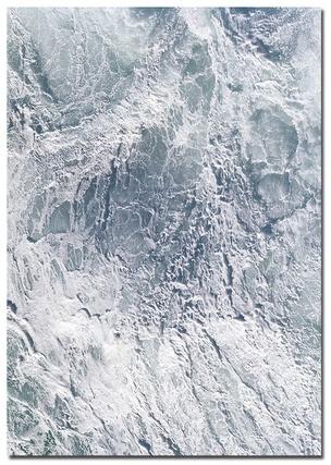 Surface Phenomena : Bartolomeo