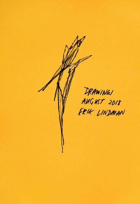 Book Launch with Erik Lindman