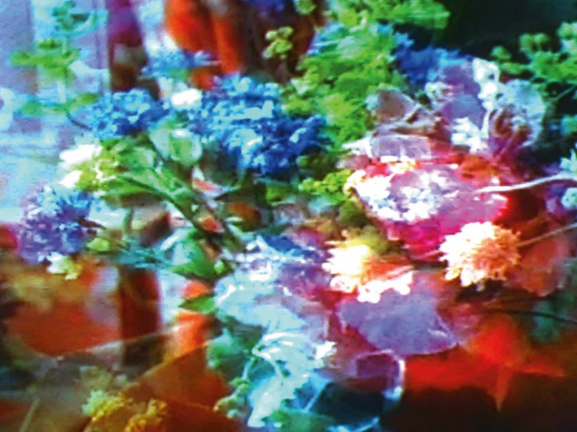 Television Flowers thumbnail 2