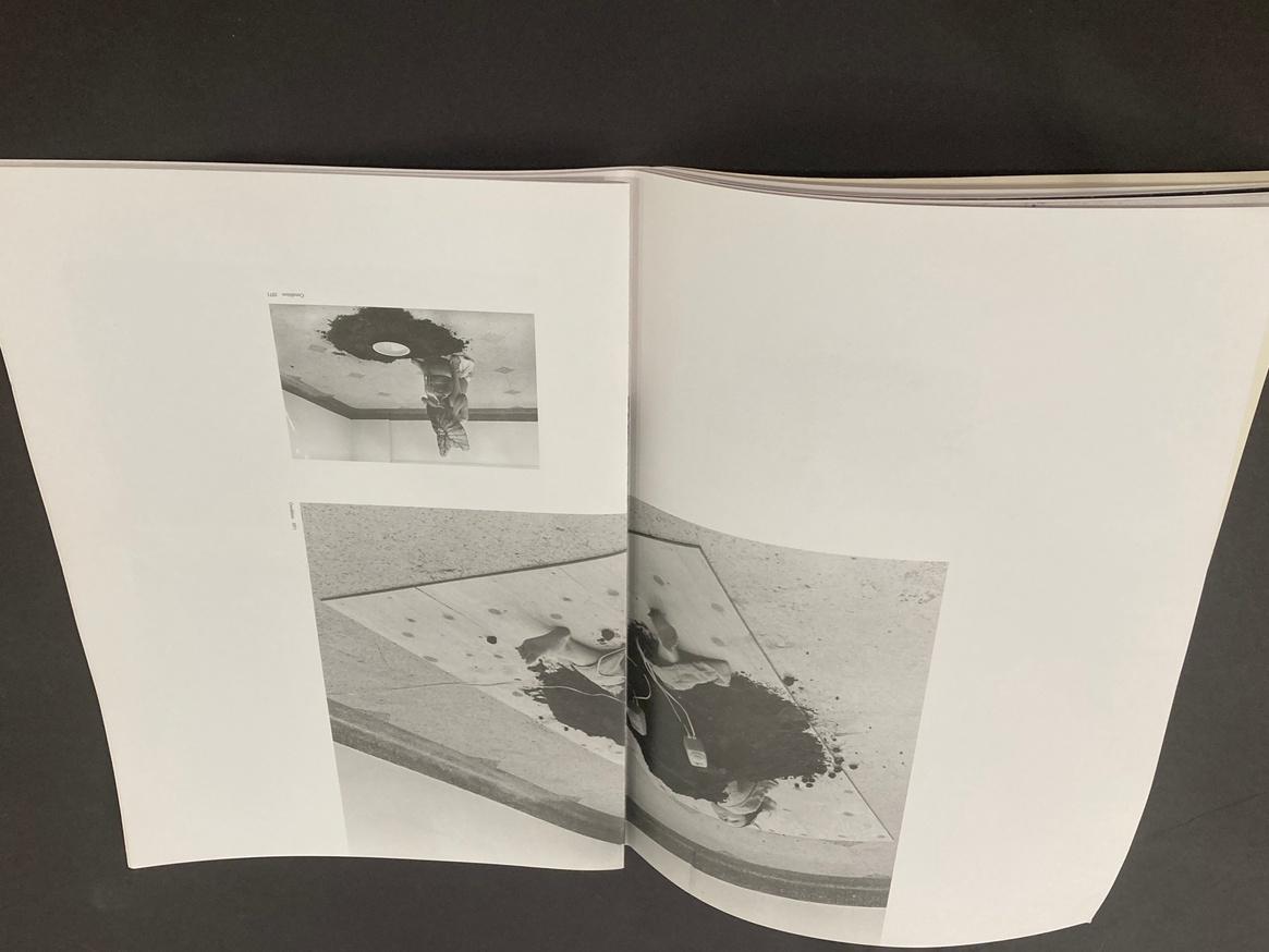 Hirokazu Kosaka (A Linda Montano Chicken Book) thumbnail 3