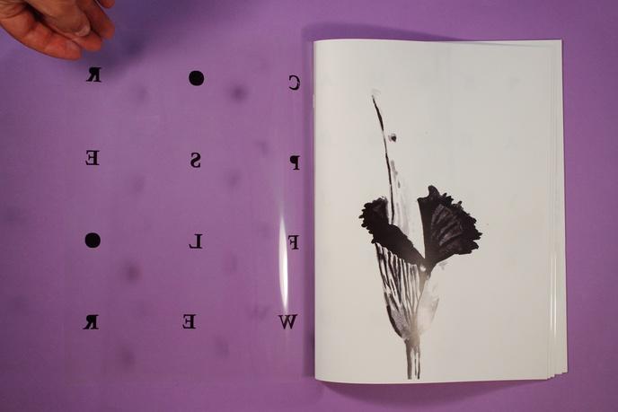 Corpse Flower thumbnail 3