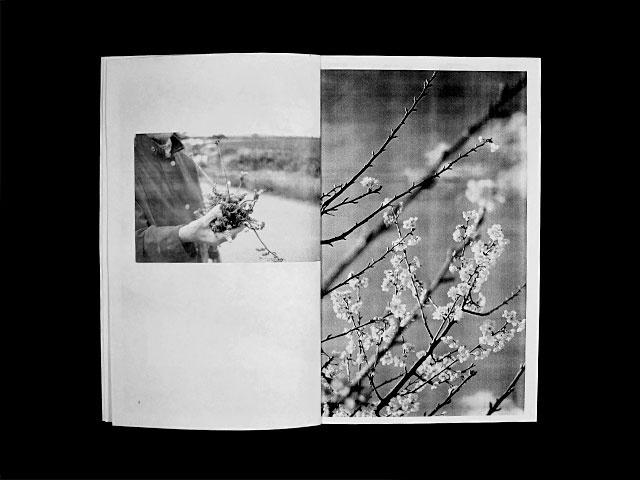 Peintures at Photographies: Histoire & Géographie familiale thumbnail 4