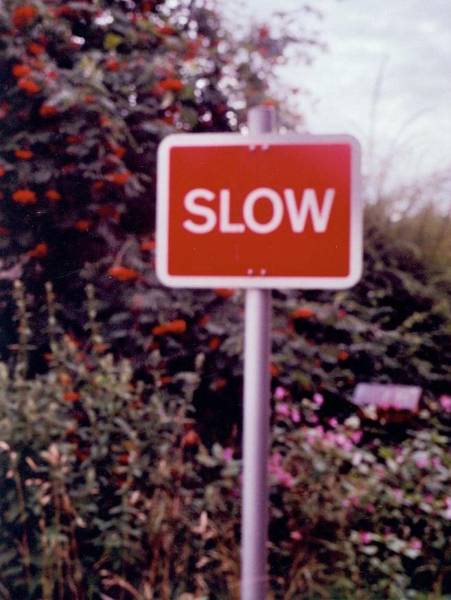 Slow thumbnail 1
