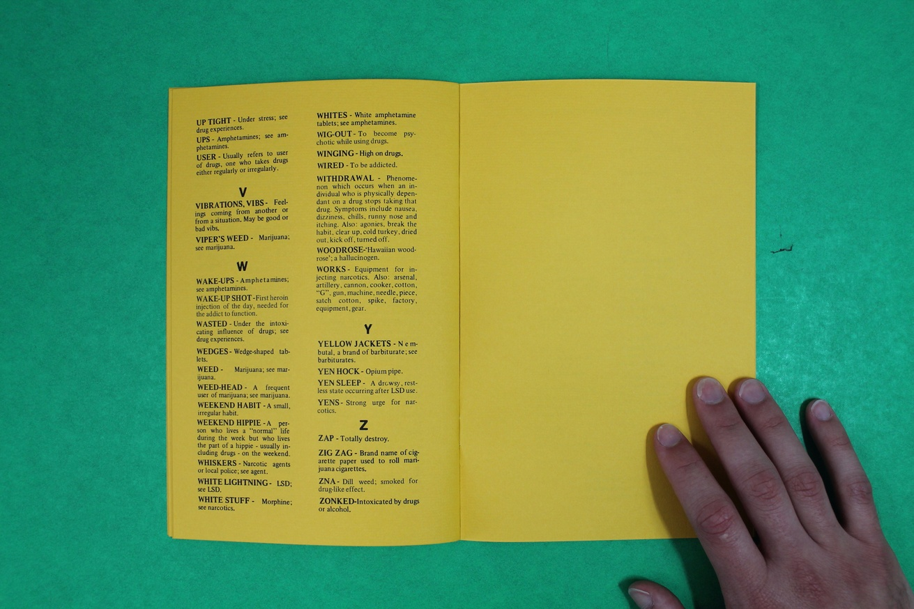 A Handbook of Drug Terms thumbnail 3