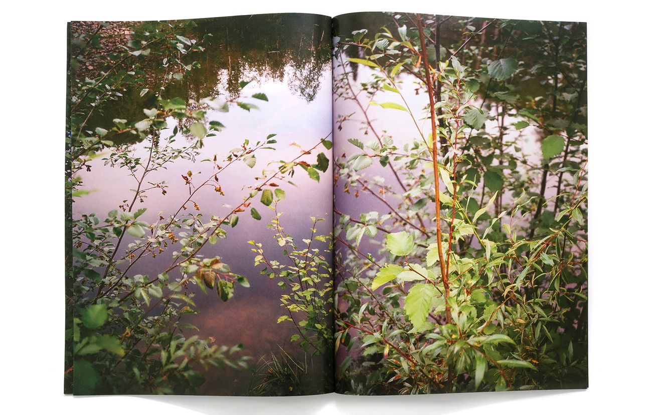 Pond thumbnail 3