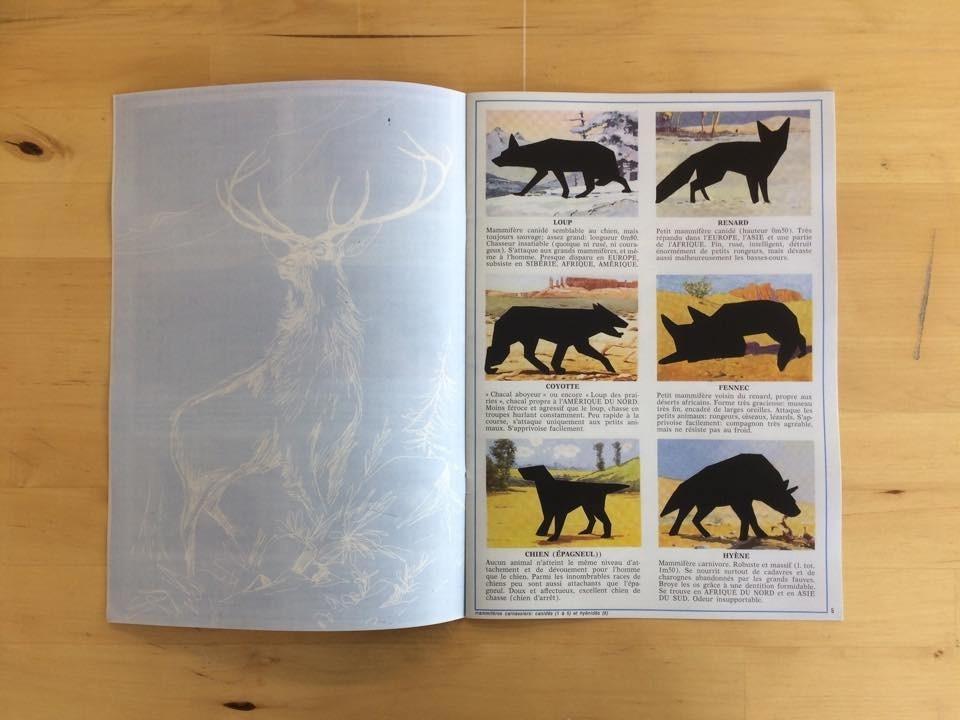 les animaux thumbnail 2