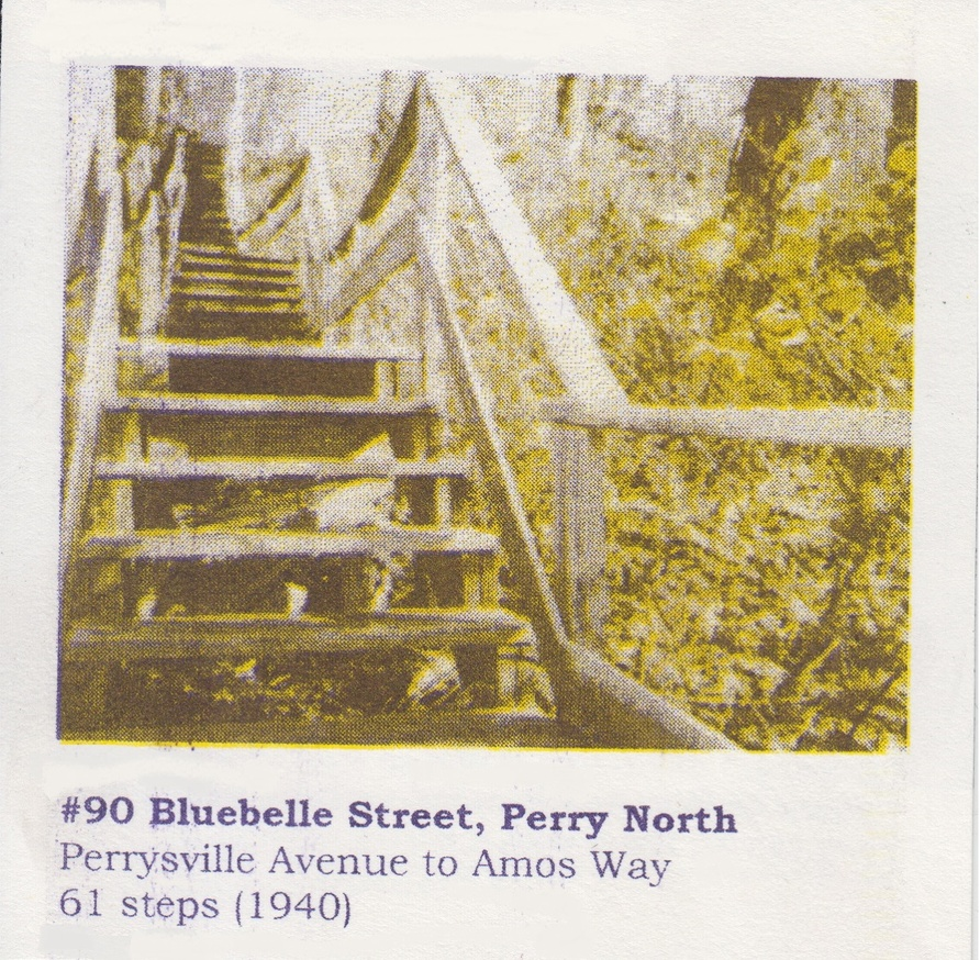 Mis.Steps: Our Missed Connections with Pittsburgh's City Steps thumbnail 4