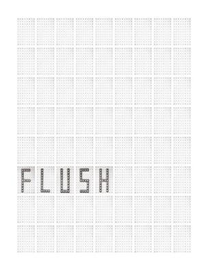 Today Is Today Is Today Is Today : Flush, 2012