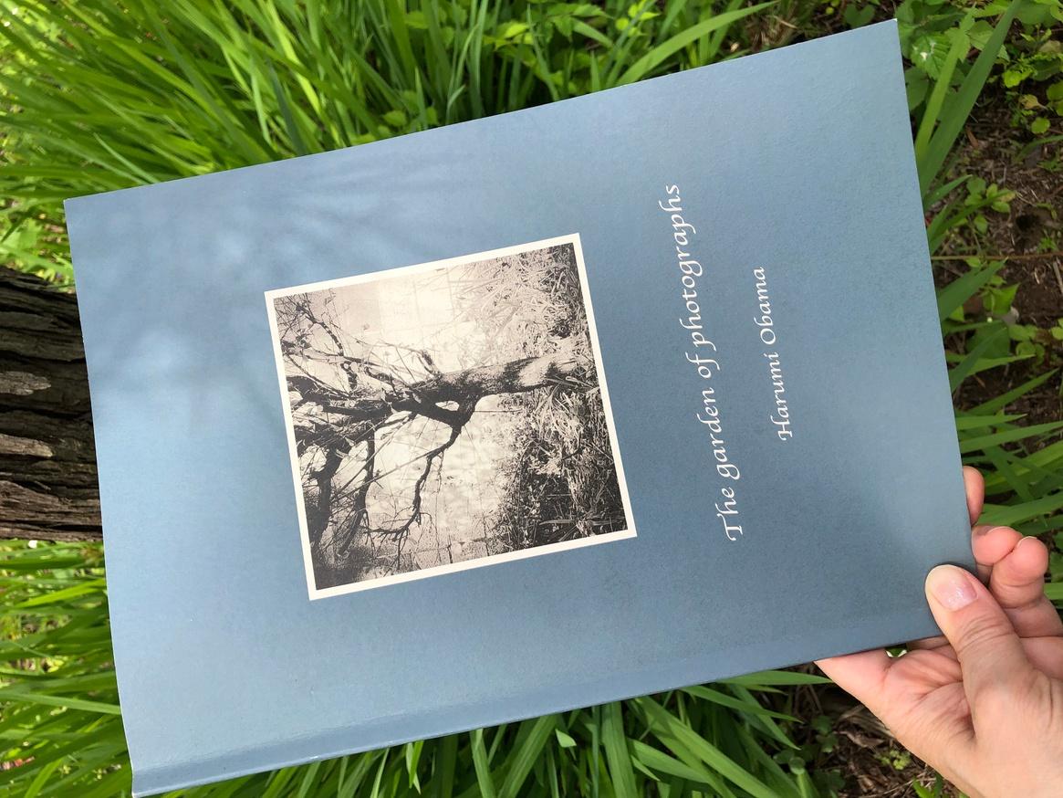 The Garden of Photographs