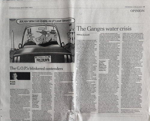 New York Times article by Anthony Acciavati