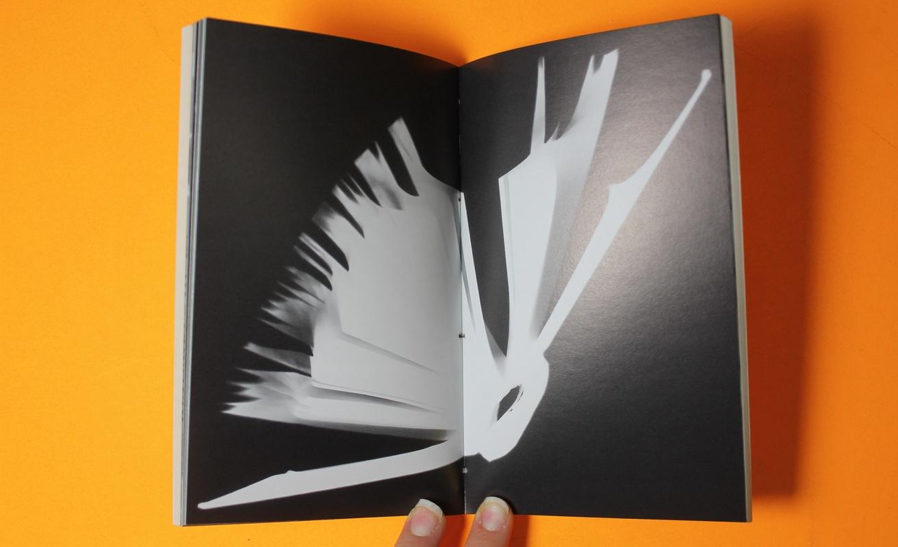 Light Bound : A Love Affair Between Books and Light thumbnail 5