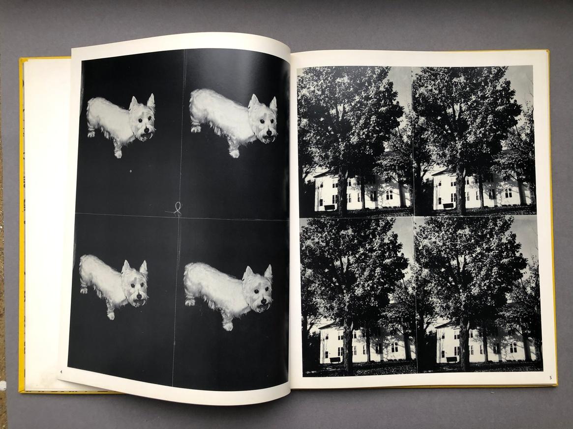Andy Warhol Photographs thumbnail 2