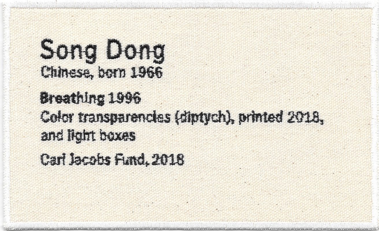 Permanent Collection Canvas Patch: Song Dong