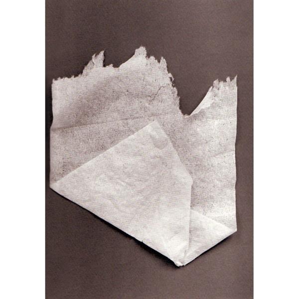 Anonymous Origami thumbnail 3