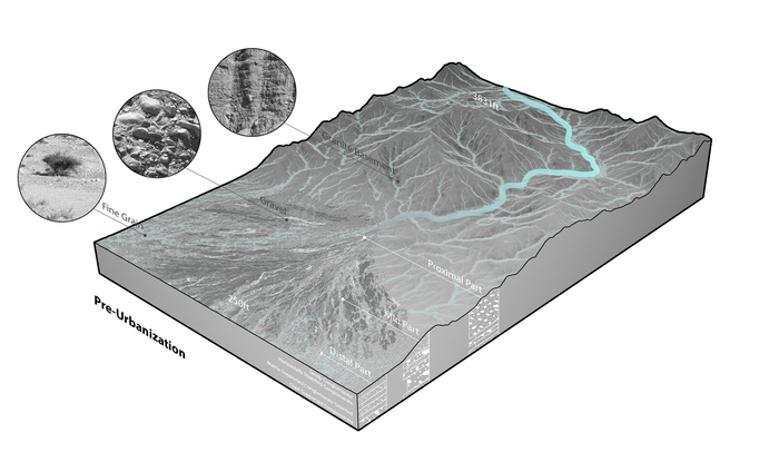 02a Natural flow of fan (pre-urbanization).png