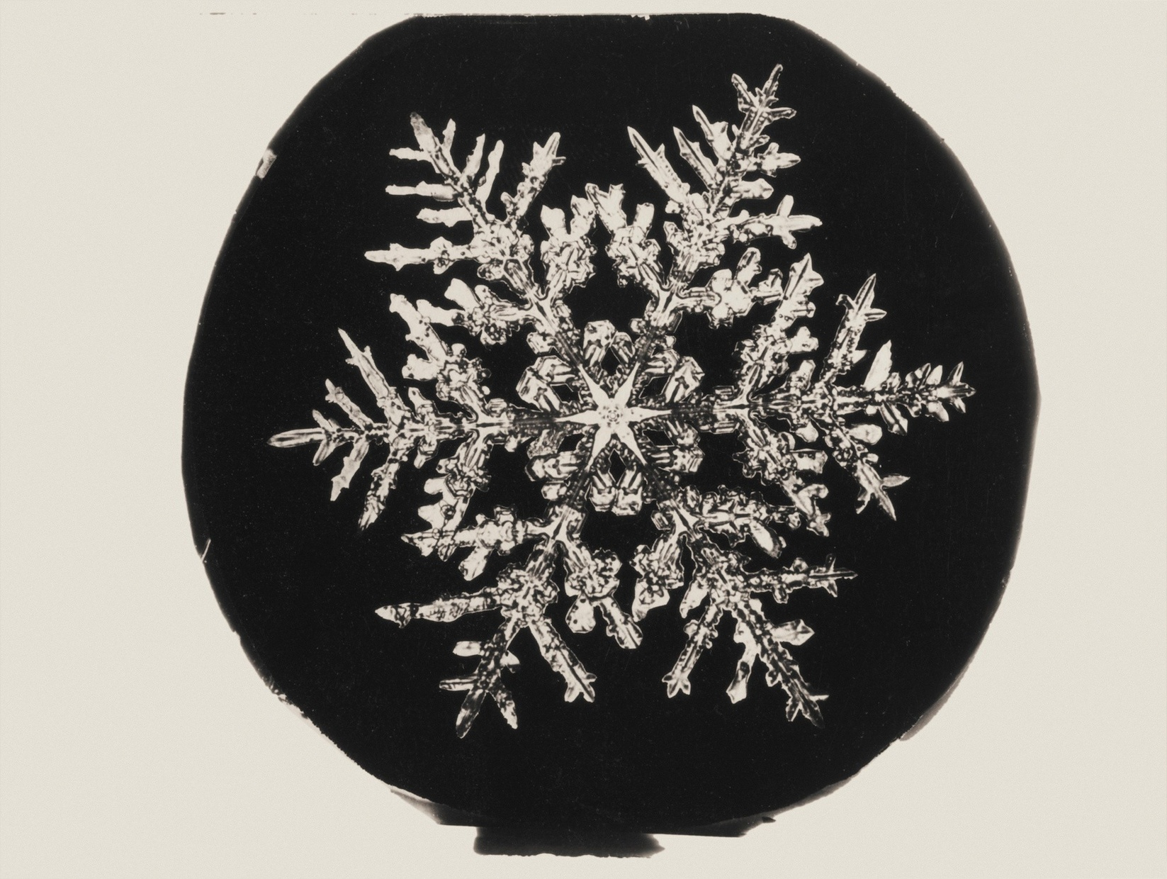 A black and white photograph of a snowflake viewed through a microscope.
